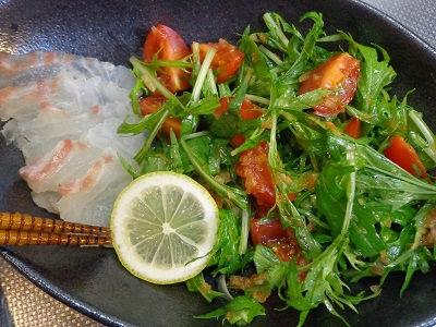 鯛のカルパッチョ 涼感サラダ仕立て07