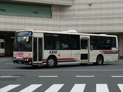 DSC01416.jpg