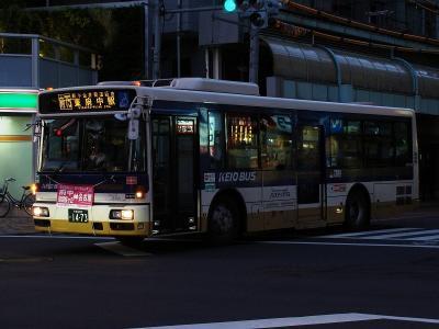 DSC01573.jpg