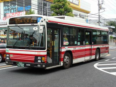 DSC02597-m.jpg