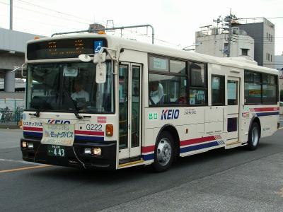 DSC02784-m.jpg