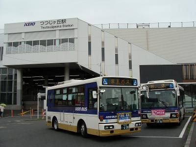 DSC02887.jpg