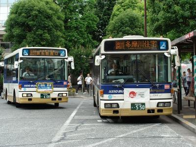 DSC02940-m.jpg