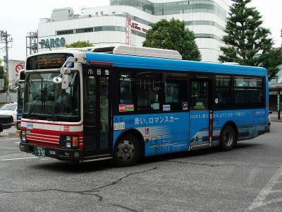 DSC02947.jpg