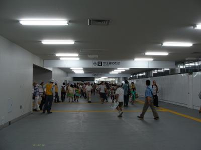 DSC05316.jpg