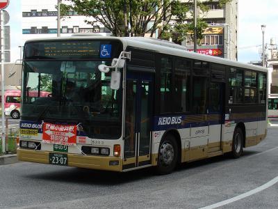DSC06241.jpg