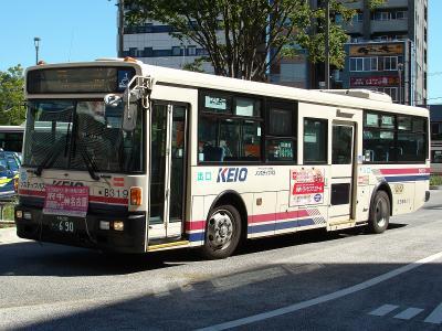 DSC06343.jpg