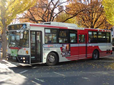 DSC07190.jpg