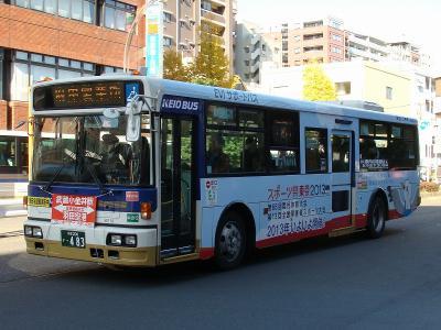 DSC07334-m.jpg