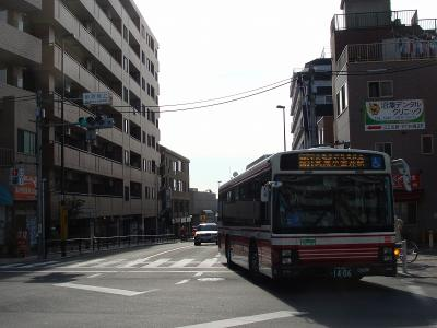 DSC08021-m.jpg