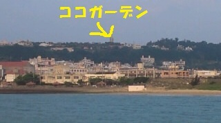 20120516100802722-1.jpg