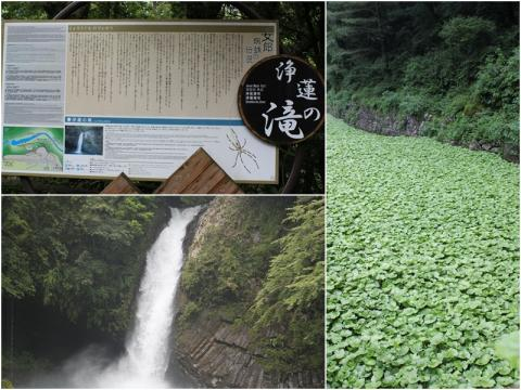 11-12-15 滝page