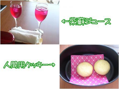 4 20120925 おやつ(人間用)