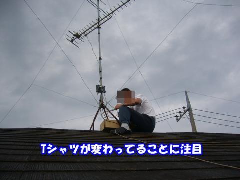 P1120654.jpg