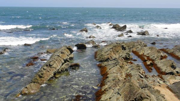 053006ひたちなかの中生代白亜紀層の海岸_convert_20120612164552