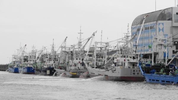 053102千葉漁港_convert_20120612220210