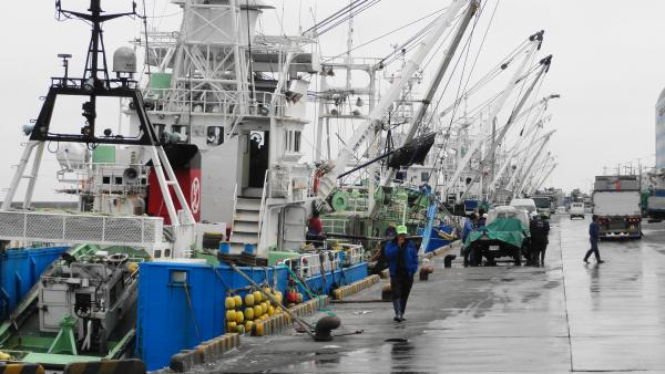 053105千葉漁港_convert_20120612220349