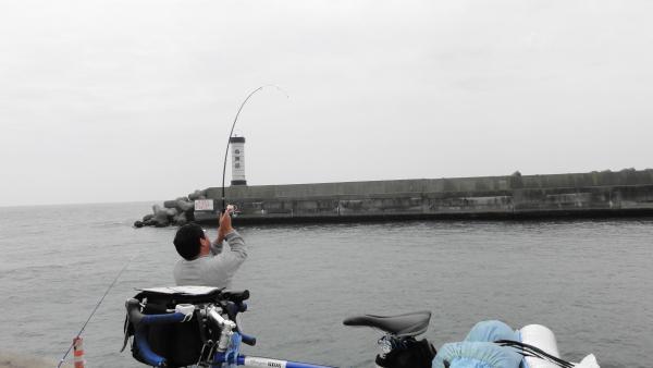 060305小田原港_convert_20120614081122