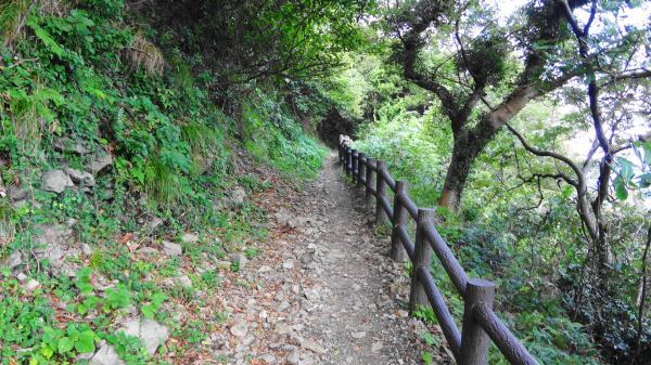 1207岬への路_convert_20121015223459