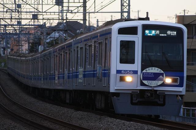 s-DSC00347.jpg
