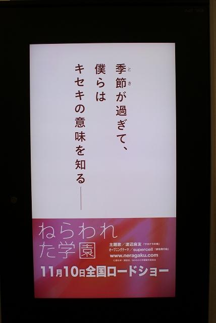 s-DSC01554.jpg