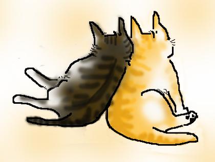 おしどり猫の蜜柑・ノル