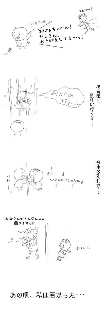 ヒヨコのヒナ時代