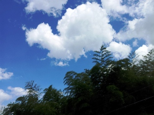 20120819_143035-1.jpg
