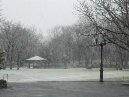 図書館前の吹雪