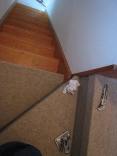 階段パンチ貼中