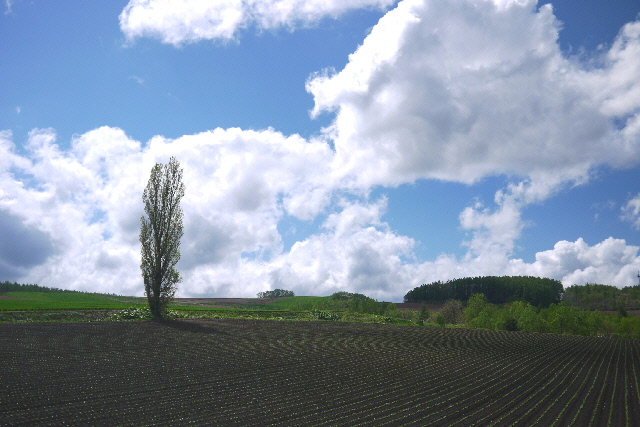 20130530