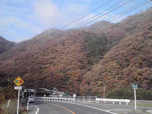 1121kinoyama.jpg