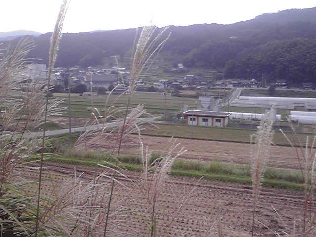 920susuki2.jpg