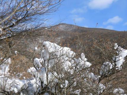 綿帽子の後に荒山