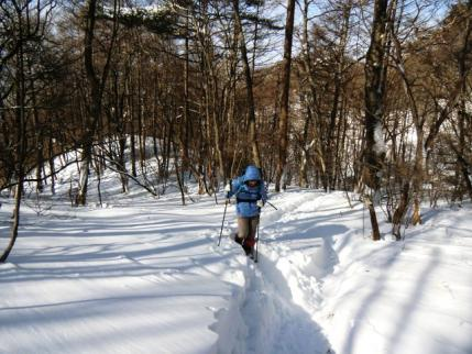 積雪は膝の高さくらい