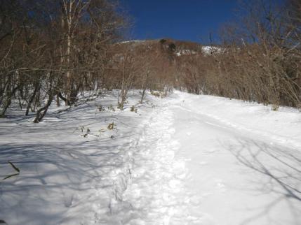雪で埋もれた階段