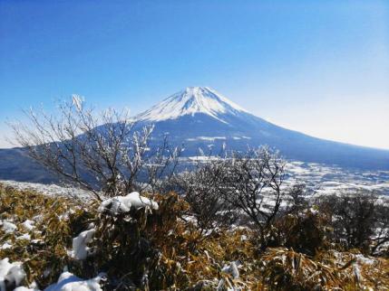 霧氷と富士