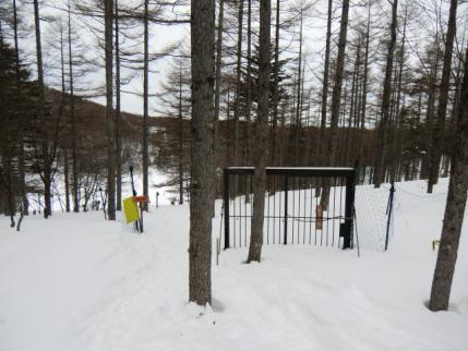 鹿除けゲートは冬季開放中