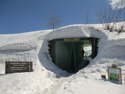 八島湿原へのトンネル