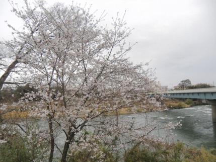利根川に架かる利根橋