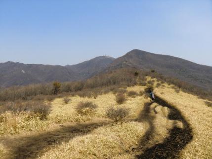 春まだ浅い稜線の道