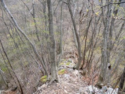 岩稜のヤセ尾根