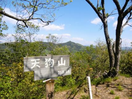 天狗山、後方に大岩山
