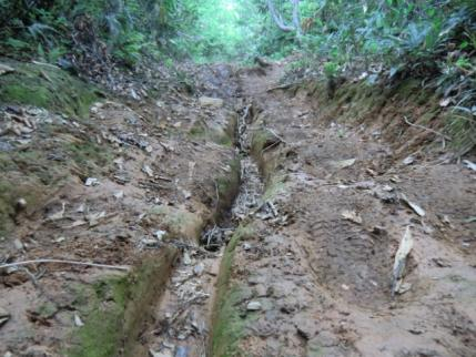 えぐれた、粘土質の道