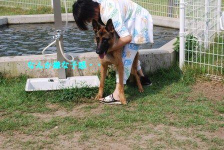 3_20120819093653.jpg