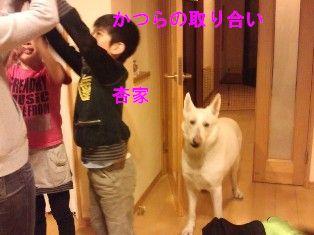 NEC_4838.jpg