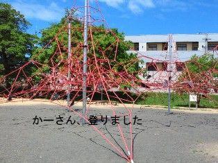 NEC_5268_20120507161333.jpg