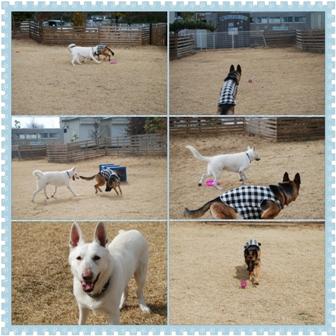 photoshake_1359273290846.jpg