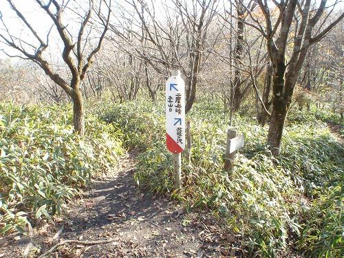 t2012-11asamakakusi-06