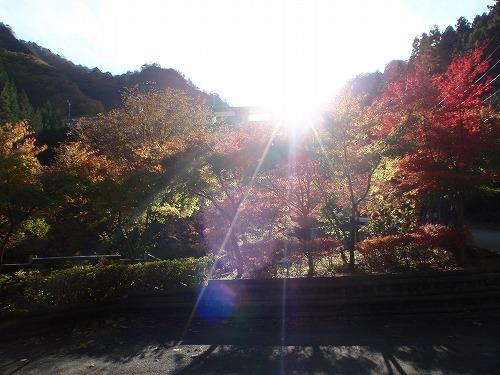 t2012-11mituiwadake-07